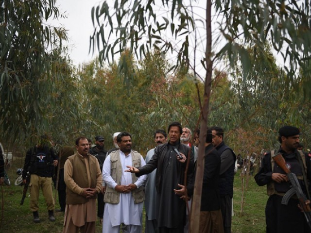 Imran Khan's tree planting effort is expected to hit its billion-tree goal by the end of 2017. PHOTO: TWITTER via @imrankhanPTI