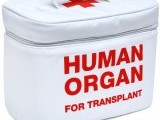 organ-transplant-photo-laughingsquid-2-2-2-2-2-2-2-2-2