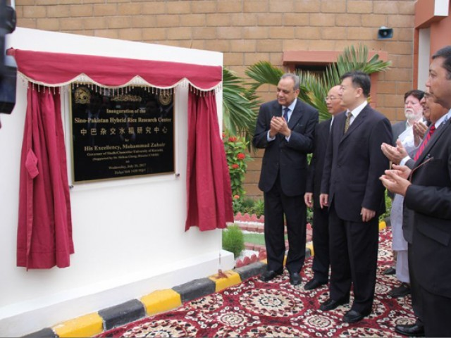 Scientists from Pakistan and China attended the inauguration of the Sino-Pakistan Hybrid Rice Research Centre at Karachi University. PHOTO: COURTESY KARACHI UNIVERSITY