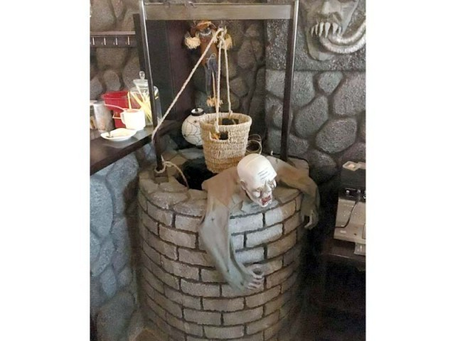 Images of the Game of Thrones themed café in Islamabad. PHOTO: PUBLICITY