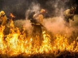 firefighters-work-to-dig-a-fire-line-on-the-rocky-fire-in-lake-county-california-3