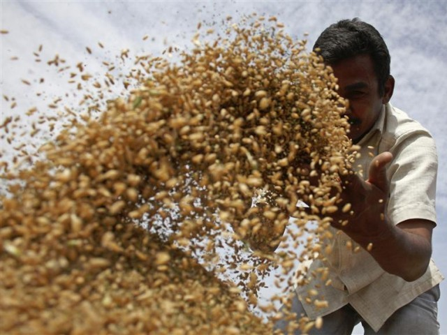 Oxfam's programme director says Pakistani farmers should have the power to access resources. PHOTO: REUTERS