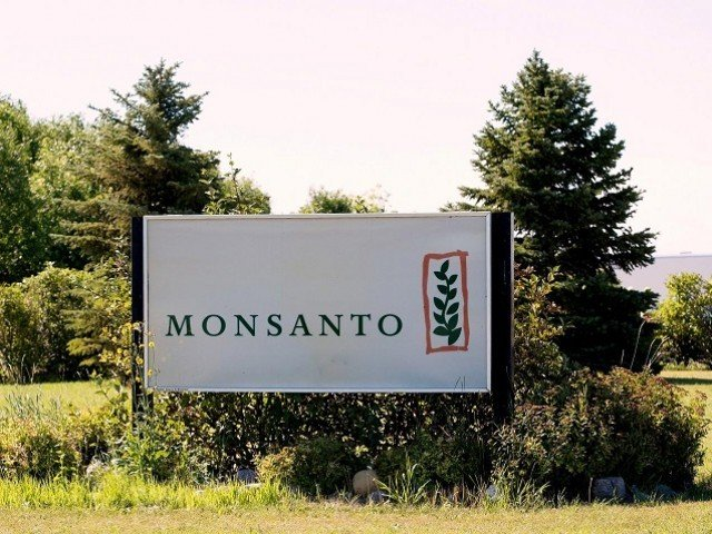FILE PHOTO: Monsanto's research farm is pictured near Carman, Manitoba, Canada on August 3, 2017.  PHOTO: REUTERS