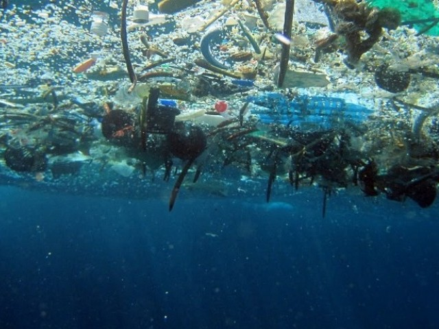 Pieces of plastic float here in ocean water. This pollution is a growing problem, and not just because it's ugly: Plastic can kill many kinds of marine life. PHOTO: NOAA