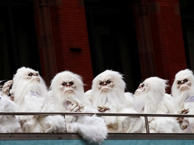 Identity of Elusive Himalayan Yeti Finally Revealed by Modern DNA Testing