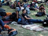 migrants-from-the-middle-east-and-asia-rest-in-a-park-before-they-start-walking-on-their-way-to-hungary-in-belgrade