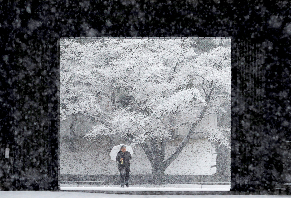 A man holding an umbrella makes his way in the heavy snow at the Imperial Palace in Tokyo. PHOTO: REUTERS