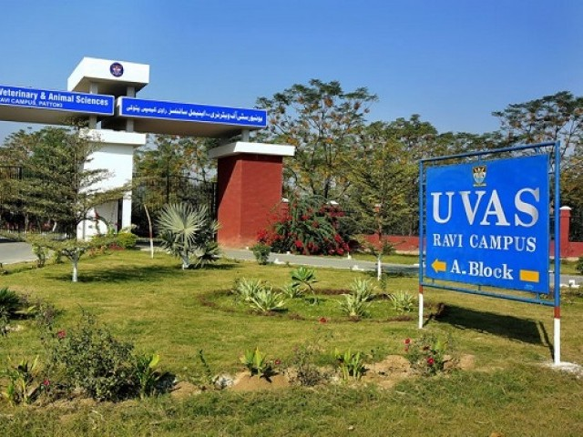 Pakistan's Top University Breaks Into Asia's Top 100
