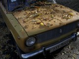 fallen-leaves-cover-an-old-car-during-a-sunny-autumn-day-in-central-kiev