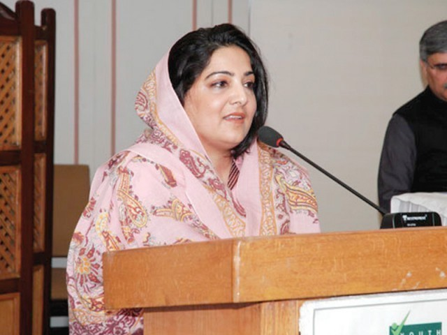 Minister of State for Information Technology and Telecommunication Anusha Rahman. PHOTO: FILE