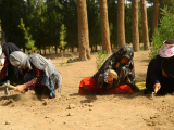 In this photograph taken on June 2, 2018, Afghan women work the soil at a park in the city of Herat. According to the World Bank, 19 percent of Afghan women had official jobs in 2017.   PHOTO: AFP