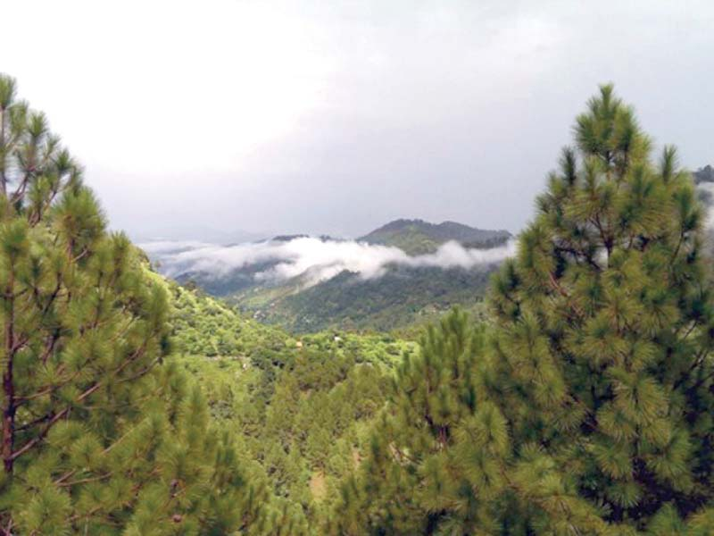 margalla-hills-faran-mahmood-article-copy-2-2-2