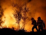 firefighters-work-to-extinguish-flames-from-a-forest-fire-in-cabanoes-near-lousa-2-2-2-2