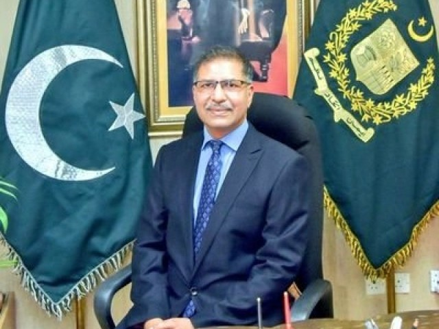 Information Minister Syed Ali Zafar. PHOTO: APP