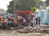 offals-cleanliness-photo-nni-2-2-2