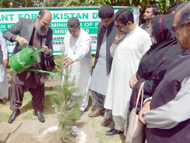Balochistan Chief Minister Jam Kamal Khan plants and waters a sapling at the CM Secretariat in Quetta. PHOTO: EXPRESS