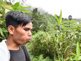 indian-villager-whistling-as-he-calls-to-a-friend-in-a-field-in-kongthong-village