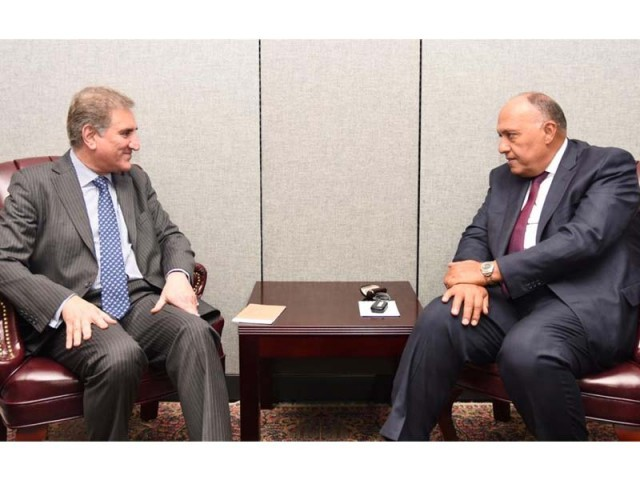 FM Qureshi, his Egyptian counterpart meet on the sidelines of UNGA. PHOTO: EXPRESS