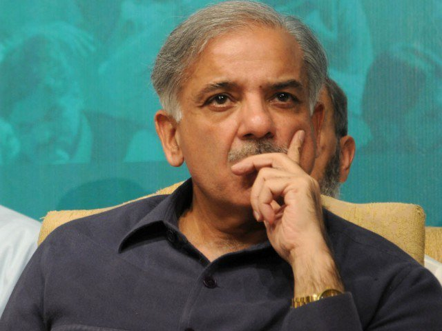 N activists protest against arrest of Shahbaz Sharif