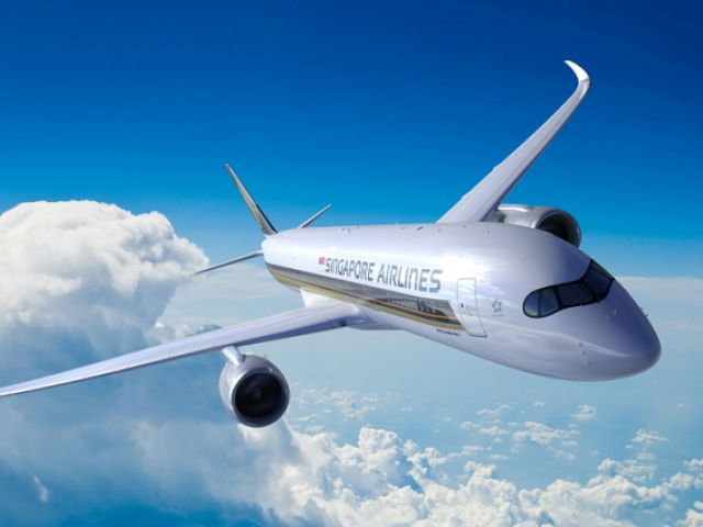 A Singapore Airlines plane in the air
