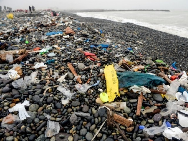 Global poo survey shows our waste is full of microplastic
