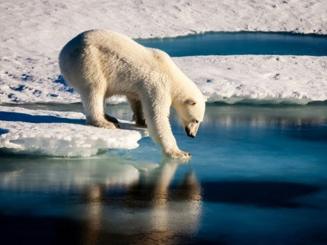 Why it matters that the Arctic is warming up