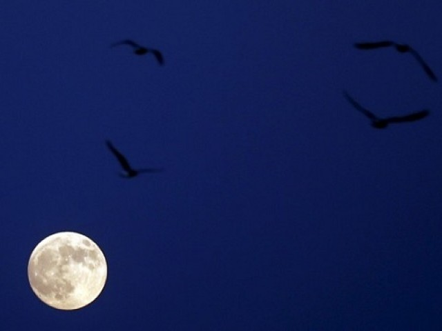 LAKANA Today's winter solstice will feature full moon and meteor shower