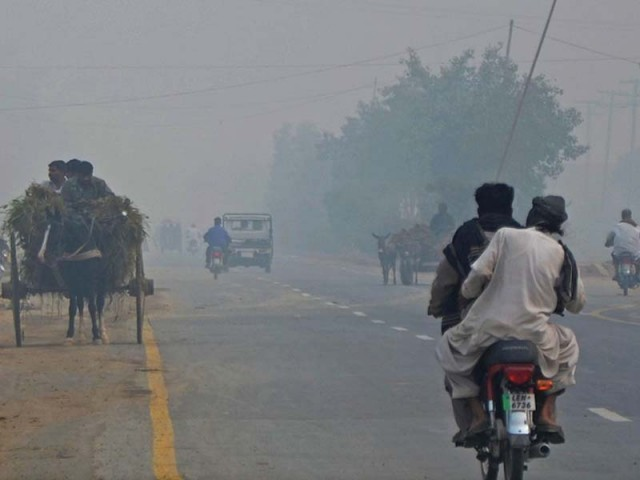 Air pollution can easily dull anyone's immune system, Dr Raza says.  PHOTO: FILE