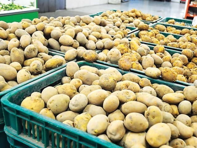 It was agreed that China would urgently initiate the process of potato export to China after fulfilling the SPS requirements. PHOTO: FILE