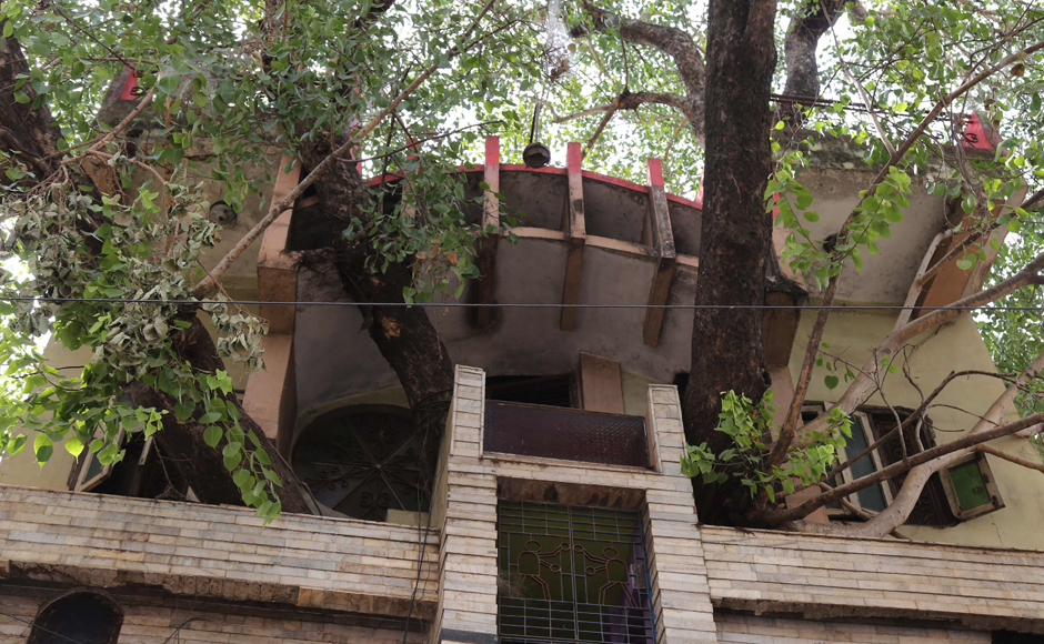 Indian residents walk along a road past the house of the Kesharwani family, which was built around a peepal tree (sacred fig tree), in Jabalpur, in the Indian state of Madhya Pradesh. Photo: Reuters