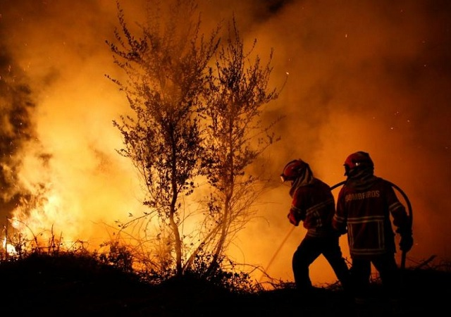 firefighters-work-to-extinguish-flames-from-a-forest-fire-in-cabanoes-near-lousa-2-2-2-2-2-2