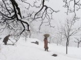 A woman carries a basket on her head during snowfall, Srinagar, Kashmir. PHOTO: REUTERS