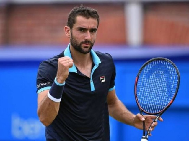Cilic showed he still has what it takes when, unseeded, he made the Australian Open fourth round this year and says he can climb the ladder again. PHOTO: AFP